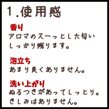 オーガニックシャンプー/トリートメント<モイストシャイン>/AROMA KIFI/シャンプー・コンディショナーを使ったクチコミ(2枚目)