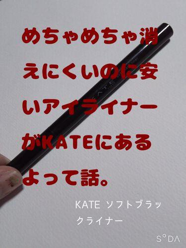 ソフトブラックライナー/KATE/リキッドアイライナーを使ったクチコミ(1枚目)