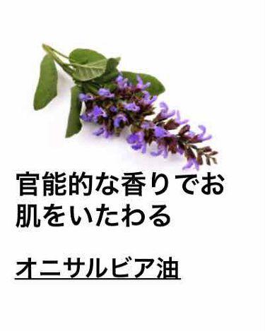 セクシー・ダイナマイト ボディスプレー/ラッシュ/香水(その他)を使ったクチコミ(6枚目)