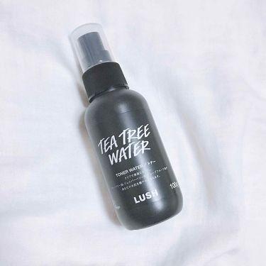ティーツリーウォーター/ラッシュ/ミスト状化粧水を使ったクチコミ(1枚目)