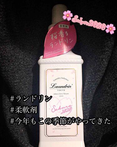 【画像付きクチコミ】桜シリーズ第2弾🌸今回は……︎︎︎︎︎︎☑︎柔軟剤探してる︎︎︎︎︎︎☑︎春待ち遠しい︎︎︎︎︎︎☑︎花粉が心配以上の方へ。私この香り大好きなんですよねー🖤毎年さくらんどりん出たら買っちゃってこの時期はこれしか使わないんです。商品には...