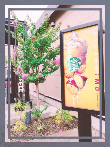 大学芋フラペチーノ/スターバックス コーヒー ジャパン/その他を使ったクチコミ(2枚目)
