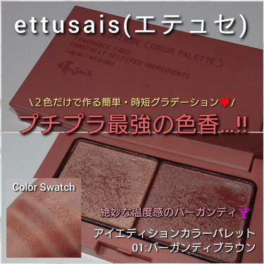 アイエディション (カラーパレット)/ettusais/パウダーアイシャドウを使ったクチコミ(1枚目)