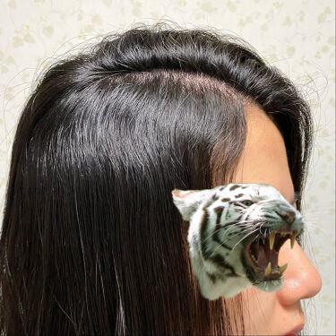 【画像付きクチコミ】梅雨の季節、それは癖毛の民にとって戦いを意味する……。以前ヘアケアアイテムを紹介した時にも書いたんですが、自分の髪質は剛毛な上にめちゃくちゃ頑固な癖毛です。中学に上がるまでは父カットでヘルメットヘアだったんですが、中学に上がって色気づ...