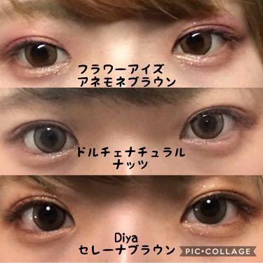 Diya 1day/Diya/カラーコンタクトレンズを使ったクチコミ(4枚目)