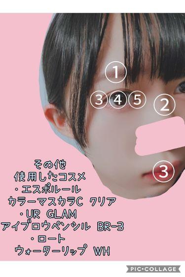 mini11月号 ミルクフェド16色メイクパレット/mini /メイクアップキットを使ったクチコミ(3枚目)