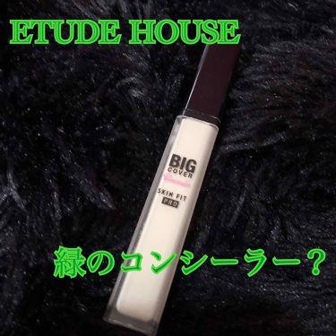 ビックカバーフィットコンシーラー/ETUDE/コンシーラーを使ったクチコミ(1枚目)