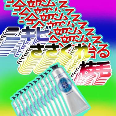 シア リップバーム/L'OCCITANE/リップケア・リップクリームを使ったクチコミ(1枚目)