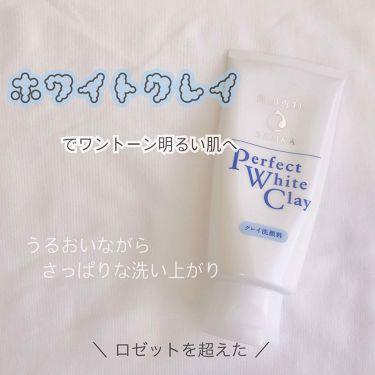 パーフェクト ホワイトクレイn/専科/洗顔フォームを使ったクチコミ(1枚目)