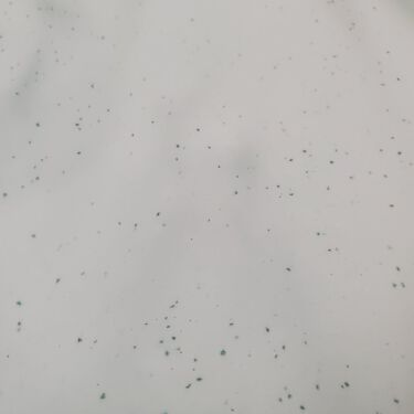 薬用入浴剤ロウリュ ディープシーバスソーク スプラッシュフルーツ(GR)/charley/入浴剤を使ったクチコミ(2枚目)