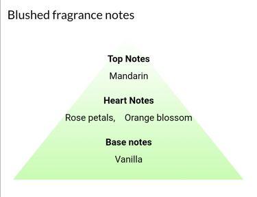 blushed/アバクロンビー&フィッチ/香水(レディース)を使ったクチコミ(2枚目)