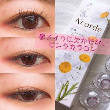 Acordeアコルデ フォーチュンピンク/アコルデ/その他化粧小物を使ったクチコミ(1枚目)