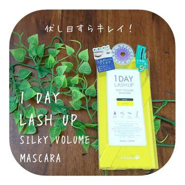 1DAY LASH UP シルキーボリュームマスカラ/K-Palette/マスカラを使ったクチコミ(1枚目)
