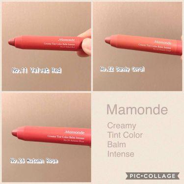 クリーミーリップティント カラーバーム/Mamonde(マモンド/韓国)/リップライナーを使ったクチコミ(2枚目)