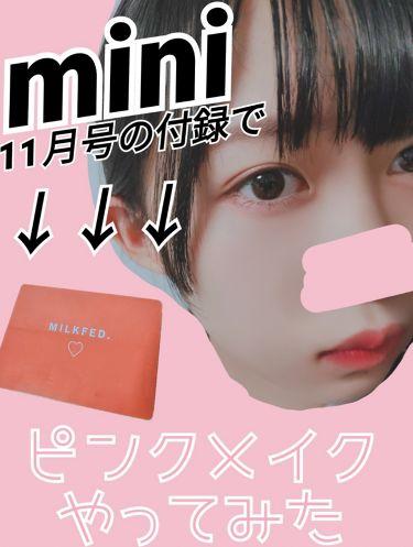mini11月号 ミルクフェド16色メイクパレット/mini /メイクアップキットを使ったクチコミ(1枚目)