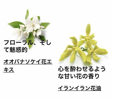 セクシー・ダイナマイト ボディスプレー/ラッシュ/香水(その他)を使ったクチコミ(5枚目)