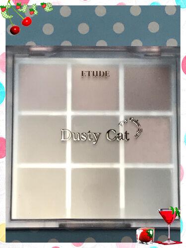 プレイカラーアイズ ダスティキャット/ETUDE/パウダーアイシャドウを使ったクチコミ(2枚目)