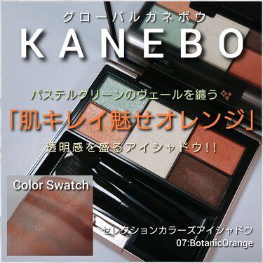 カネボウ セレクションカラーズアイシャドウ/KANEBO/パウダーアイシャドウを使ったクチコミ(1枚目)