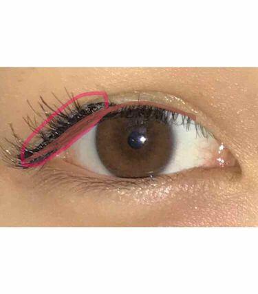 デコラティブアイラッシュ (上まつ毛用)/Decorative Eyelash/つけまつげを使ったクチコミ(3枚目)
