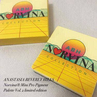 Mini Pro Pigment Palette Vol. 2 limited edition/アナスタシア ビバリーヒルズ/パウダーアイシャドウを使ったクチコミ(1枚目)