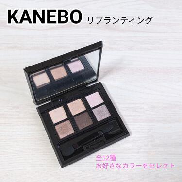 カネボウ アイカラーデュオ/KANEBO/パウダーアイシャドウを使ったクチコミ(1枚目)