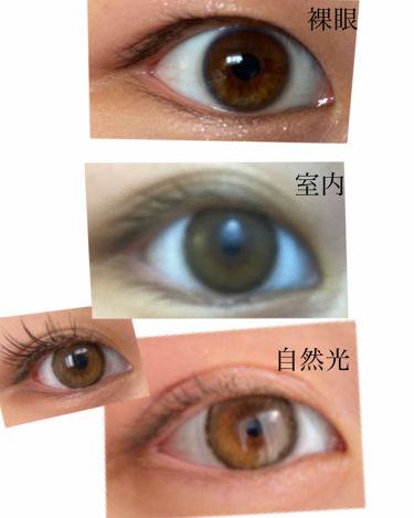 ロシャシリーズ/CLARA CONTACT/カラーコンタクトレンズを使ったクチコミ(3枚目)