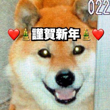 gaho《がほ》 on LIPS 「🎍🌅⛩謹賀新年⛩🌅🎍皆様、あけましておめでとうございます❤今年..」(1枚目)