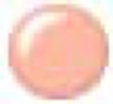 UV リキッド ファンデーション 23 ピンクオークル系
