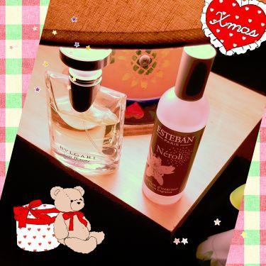 プールオム オードトワレ/BVLGARI/香水(メンズ)を使ったクチコミ(1枚目)