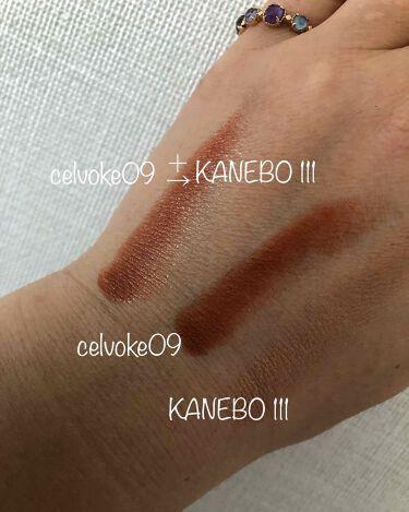 カネボウ Nールージュ/KANEBO/口紅を使ったクチコミ(1枚目)