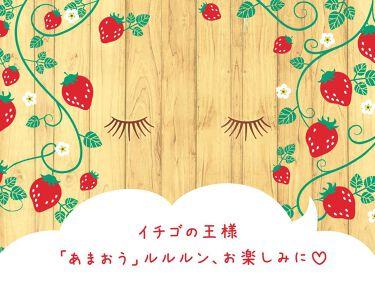 ~イチゴの王様「あまおう」ルルルン、お楽しみに♡~ 福岡県のみで生産されているイチゴの王様「あまおう」🍓 甘酸っぱくて美味しいだけじゃなくて、 メラニンの産生を防いでくれる美白成分 「イチゴポリフェノール」も含まれているのよ*ᵕ ᵕ*♪  実は今、みんなにもあまおうのパワーを お肌で感じてもらうために色々準備しているから、 楽しみに待っていてね💕 その前に、 お肌に嬉しいあまおうのヒミツをのぞいてみましょう✨ 詳しくは→https://goo.gl/XwS2NN  #ルルルン, #Lululun, #フェイスマスク研究所, #プレミアムルルルン