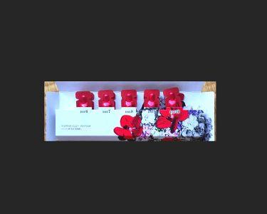 ジェリー アクアリスタ/アスタリフト/美容液を使ったクチコミ(1枚目)