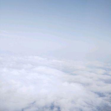 ハーバルリペアシャンプー/コンディショナー/MARKS&WEB/シャンプー・コンディショナーを使ったクチコミ(3枚目)