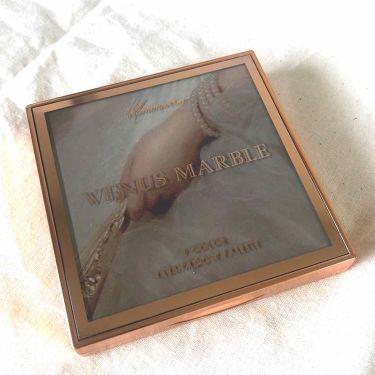 アイシャドウパレット 9色/Venus Marble(ヴィーナスマーブル)/パウダーアイシャドウを使ったクチコミ(2枚目)