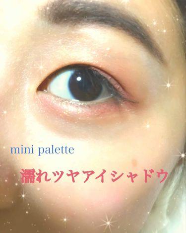 アイグロススティック/mini Palette(ミニパレット)/ジェル・クリームアイシャドウを使ったクチコミ(1枚目)