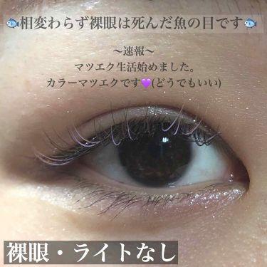 バンビシリーズ ヴィンテージヘーゼル/エンジェルカラー/その他を使ったクチコミ(3枚目)