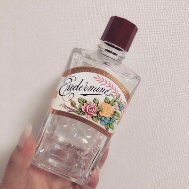 オイデルミン(N)/SHISEIDO/化粧水を使ったクチコミ(1枚目)