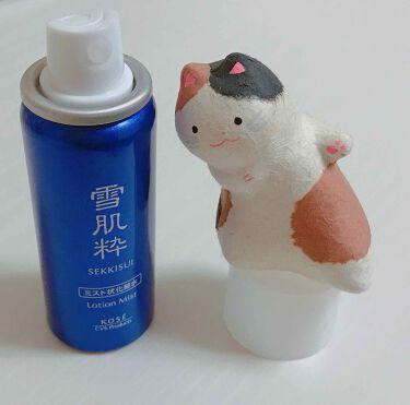化粧水 ミスト N/雪肌粋/ミスト状化粧水を使ったクチコミ(1枚目)
