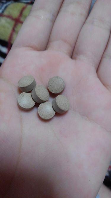 食べてもDiet/井藤漢方製薬/ボディサプリメントを使ったクチコミ(2枚目)