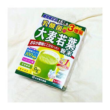 乳酸菌プラス 大麦若葉 粉末 山本漢方製薬