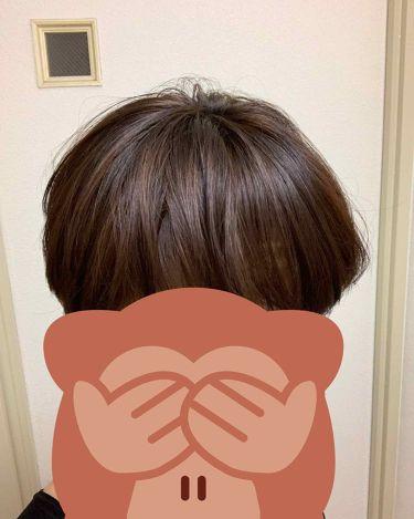 ビューティーラボ ホイップヘアカラー/ホーユー/ヘアカラー・白髪染め・ブリーチを使ったクチコミ(2枚目)