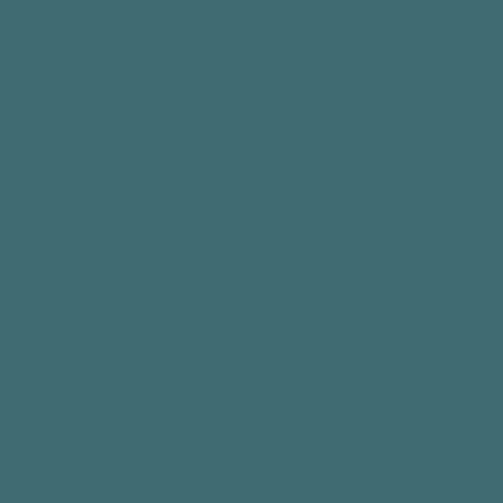 プライベート シャドウ 04 フォトグラフィック (ビニール)