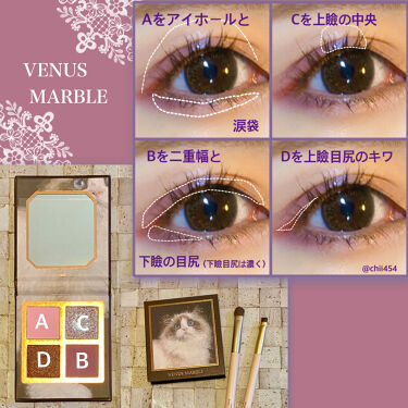 アイシャドウ猫シリーズ/Venus Marble(ヴィーナスマーブル)/パウダーアイシャドウを使ったクチコミ(2枚目)