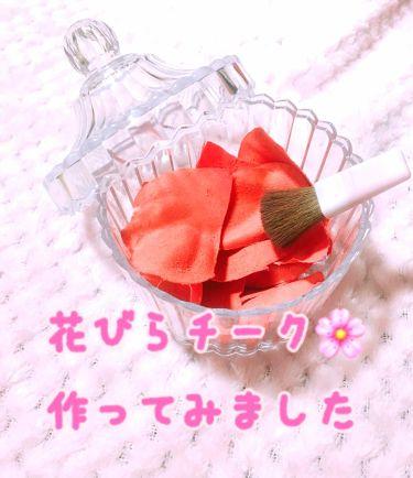 ♡zumi♡ on LIPS 「Seriaで小さめの可愛いインテリアポットを発見し、「花びらチ..」(1枚目)