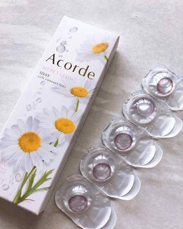 Acordeアコルデ フォーチュンピンク/アコルデ/その他化粧小物を使ったクチコミ(2枚目)
