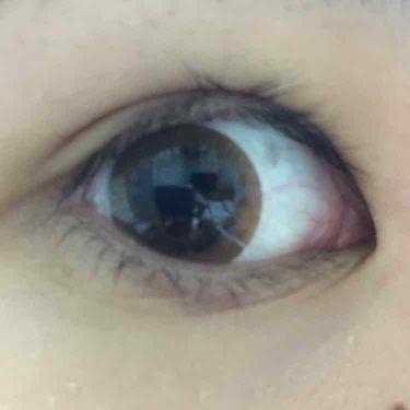 カラコン/Decorative Eyelash(デコラティブアイラッシュ)/その他化粧小物を使ったクチコミ(3枚目)