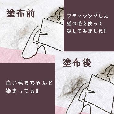 三毛猫ピーナッツ on LIPS 「lalaChuu(ララチュー)HAIRCUSHION販売名:白..」(4枚目)