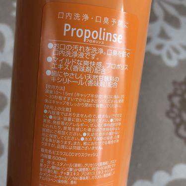 プロポリンス/プロポリンス/マウスウォッシュ・スプレーを使ったクチコミ(2枚目)