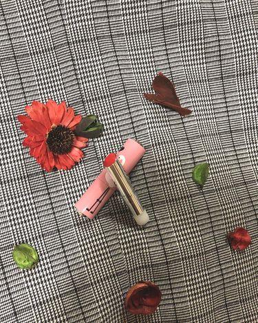 ディアマイグラスリップトーク リップカラー&ケース/ETUDE HOUSE/口紅を使ったクチコミ(3枚目)