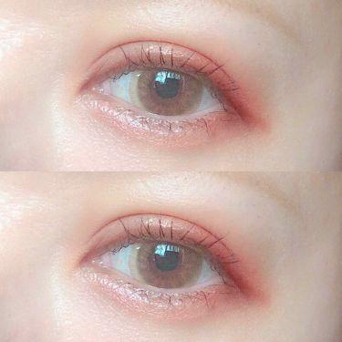 The Bella collection eyeshadow palette/CELEFIT/パウダーアイシャドウを使ったクチコミ(1枚目)